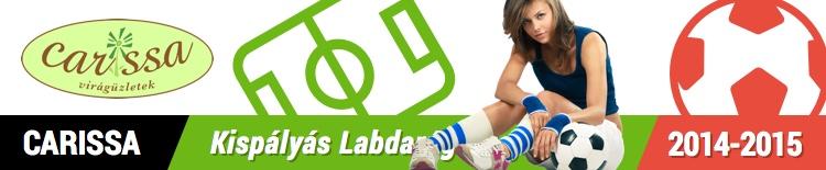 Dunaújvárosi Labdarúgó Szövetség - DLSZ