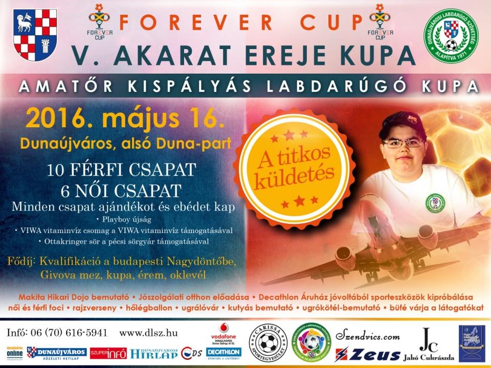 V. Akarat Ereje Kupa 2016. DLSZ