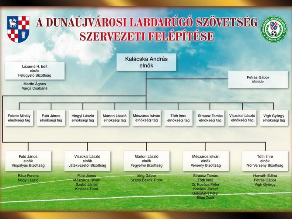 DLSZ: szervezeti felépítés