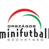 MiniFutball