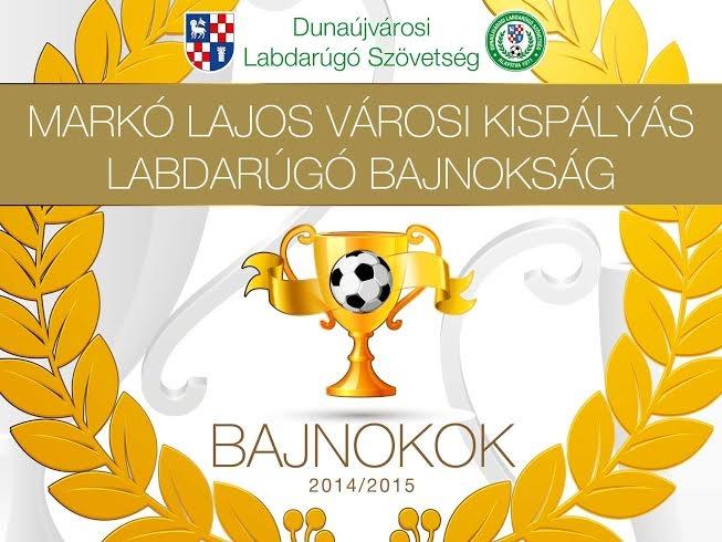 DLSZ 2014/2015 Bajnokai