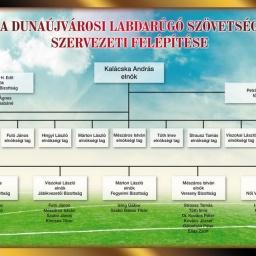 DLSZ szervezeti felépítése 2015
